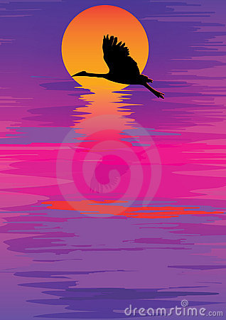 Colorful Sky Sunset Bird_eps