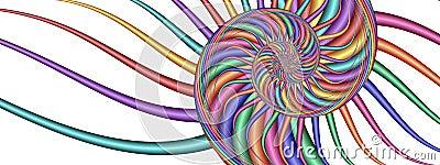 Colorful Swirl - Fractal Image