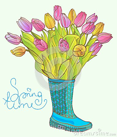 Colorful Tulips in the Boot