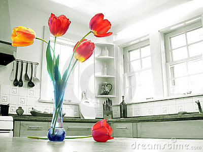 Colorful Tulips Sunny Kitchen