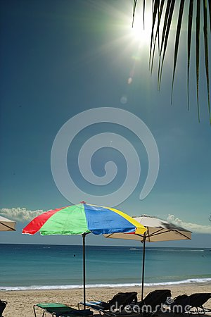 Colorful umbrellas on sunny sea beach.