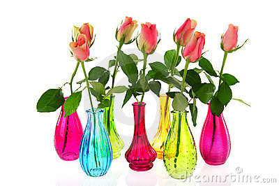 Colorful vases with pink roses