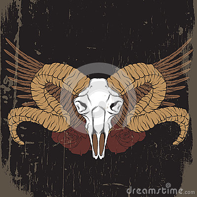 Colorful vector hand drawn illustration. Artwork with skull of ram Vector Illustration