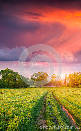 Free Colorful Vertical Panorama Of The Spring Meadow With Country Roa Royalty Free Stock Images - 54621409