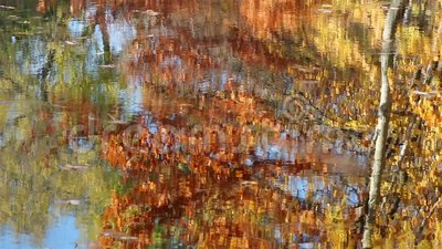 Colorful water ripple in autumn stock footage