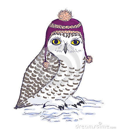 Free Colorful White Owl In Purple Hat With Pompon. Stock Image - 62921201