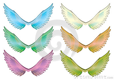Colorful Wings Set Vector