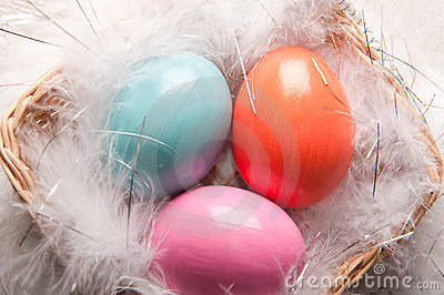 Colorfull Easter eggs on feather background