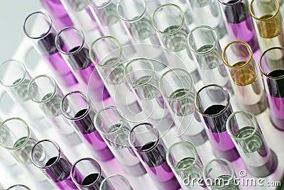 Colorfull lab glasses ftom the top