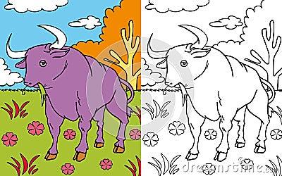 Coloring book bull