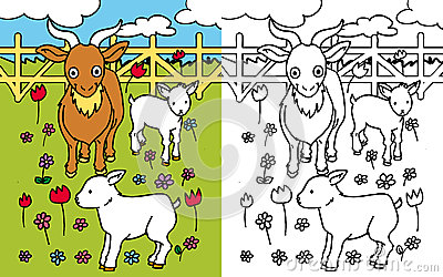 Coloring book goat