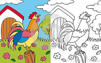 Coloring book hen rooster