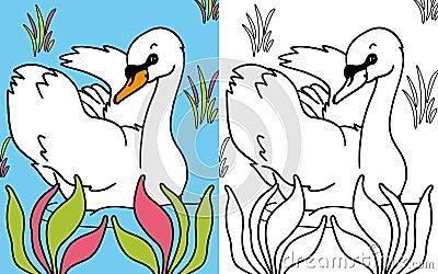 Coloring book swan