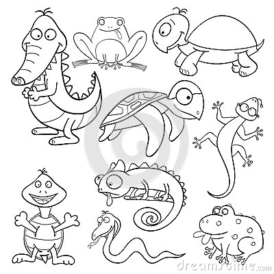 Free Coloring Book With Reptiles And Amphibians Royalty Free Stock Photos - 25064578