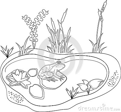 Coloring Stock Vector Image 46887729