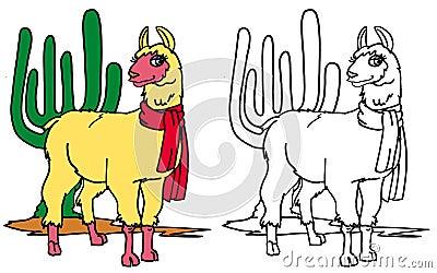 Coloring llama