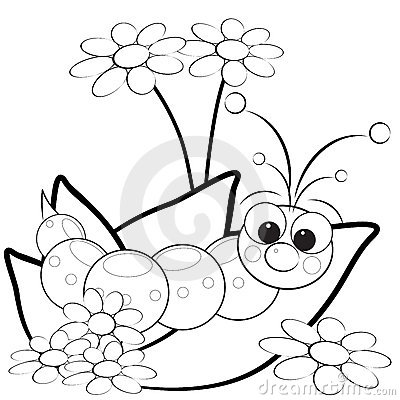 Free Coloring Page - Grub And Flowers Royalty Free Stock Images - 9765429