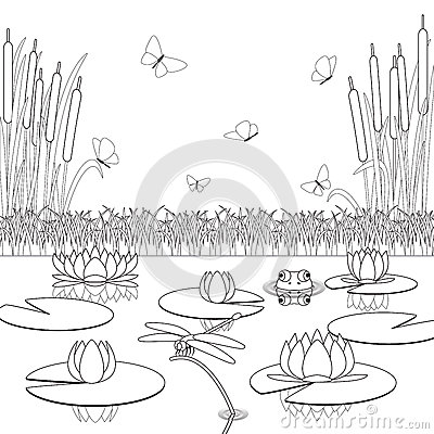 Coloring Page With Pond Inhabitants And Plants Stock Photo Image 66383357