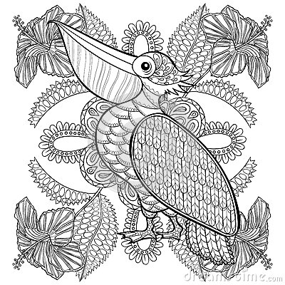 Free Coloring Page With Pelican In Hibiskus Flowers, Royalty Free Stock Images - 61901989