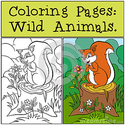 Free Coloring Pages: Wild Animals. Little Cute Squirrel. Royalty Free Stock Images - 71206149