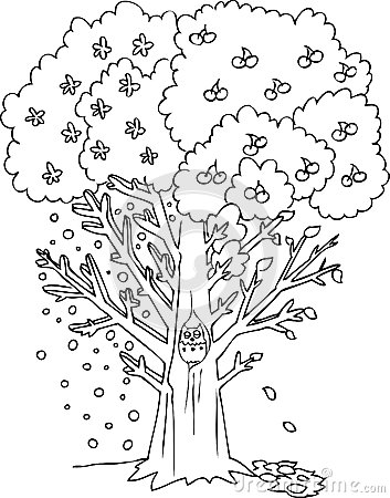 4 Seasons Colouring Sheets : Coloring season tree vector royalty free stock image image: 36688886