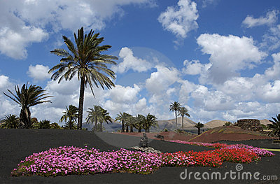 Colors of Lanzarote
