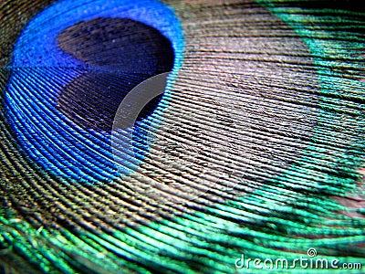 Colors n  Patterns