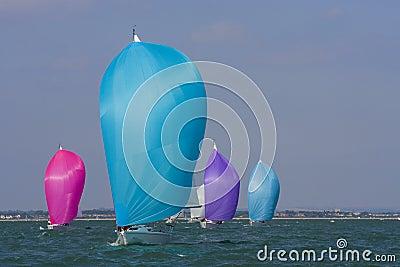 Colors At Sea