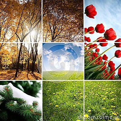 Colors of season