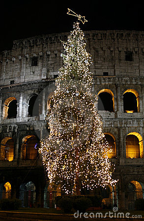 Colosseo with christmas tree at night. Rome, Italy