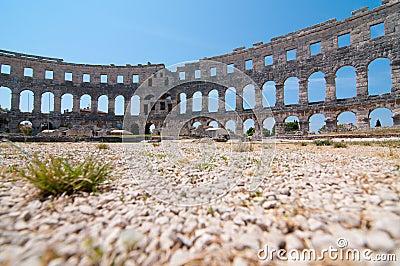 Colosseum arena