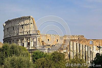 Colosseum through trees