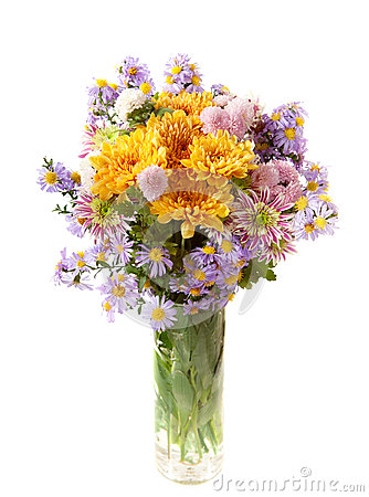 Colourful chrysanthemums bunch