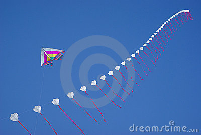 Colourful kites in sky