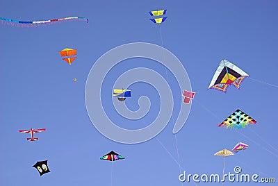 Colourful kites in sky
