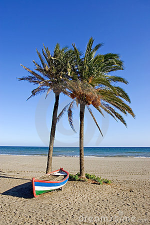 Free Colourful Rowing Boat And Palm Trees On Beach Stock Images - 678214