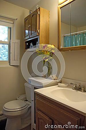 Colpo dell interiore della stanza da bagno