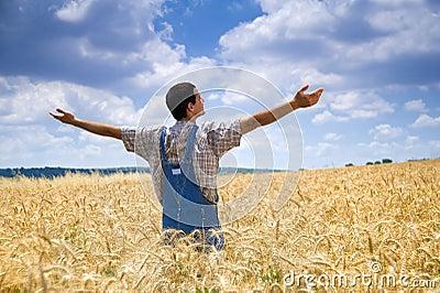 Coltivatore in un campo di frumento