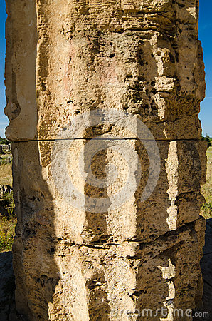 Column of The Temple of Hera (Temple E) at Selinun