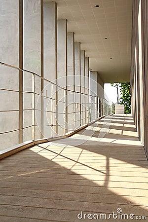 Columna y sombra