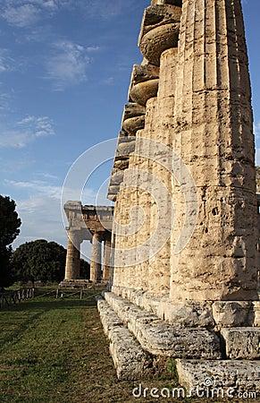 Paestum Columns of the temple