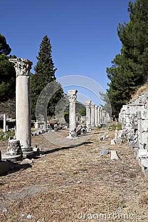Columns in The Tetragonos Agora
