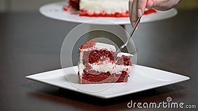Coma la torta roja deliciosa cortada del terciopelo almacen de metraje de vídeo