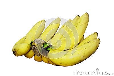 Comb of yellow bananas