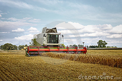 Combine harvester at corn