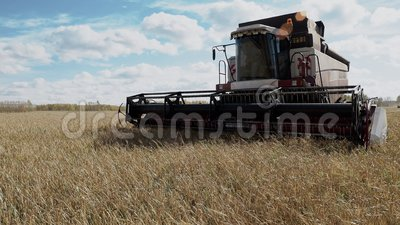 Combine harvester harvest agriculture cereal culture farm field. Thresher blades cutting barley. Season harvesting, rural nature landscape with working stock footage