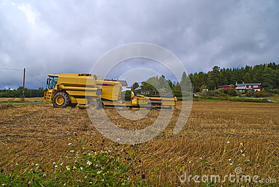 Combine harvesters, new holland tx62