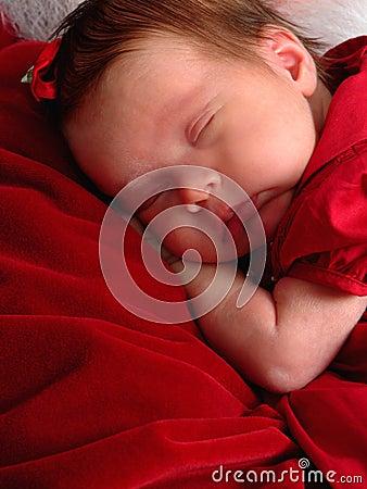 Comfort in Santa s Arms
