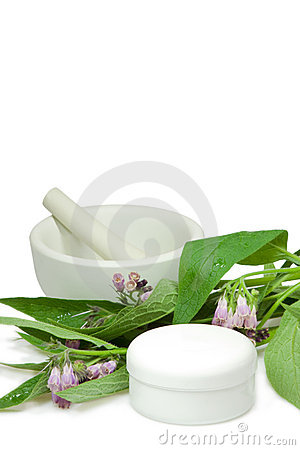 Comfrey with creampot