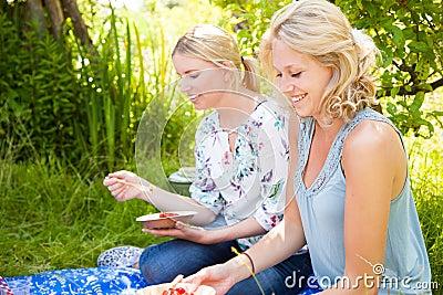 Comida campestre al aire libre